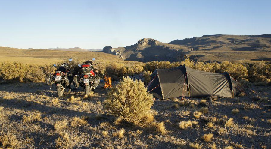 Dziki camping