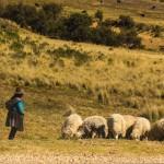 Boliwia – Dzień 245
