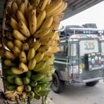 Ekwador – Dzień 434